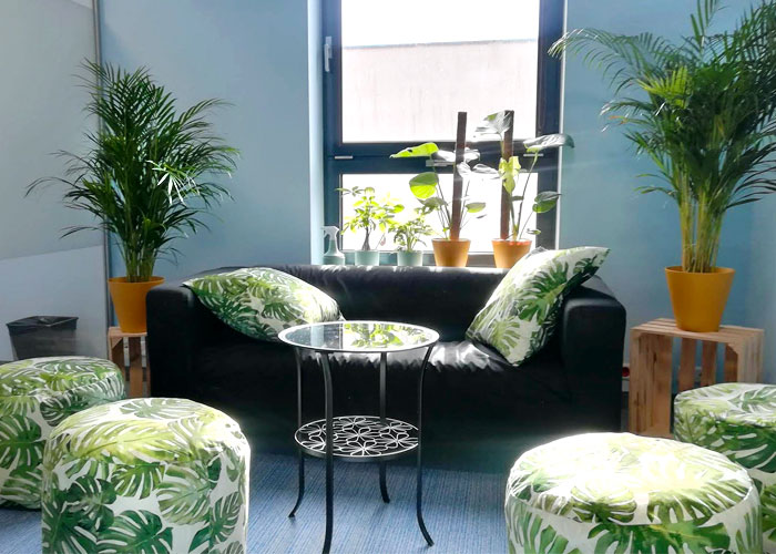 Poland office, small conference room with plants
