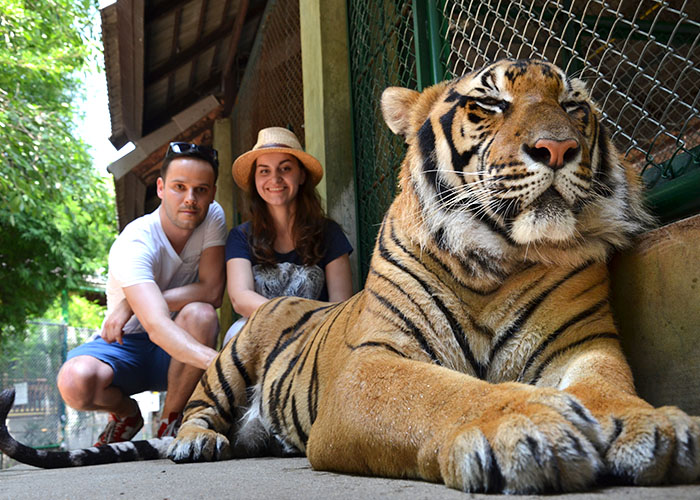 Poland team in Thailand Peter Olena and tiger
