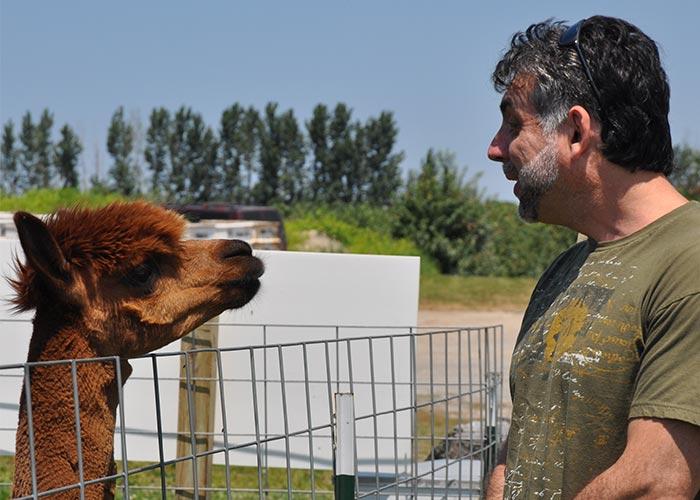 Eduard saying hi to the lama