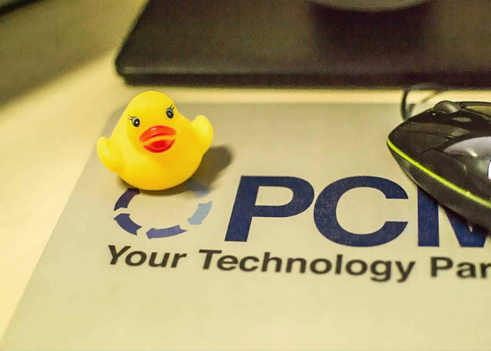 Poland team duck