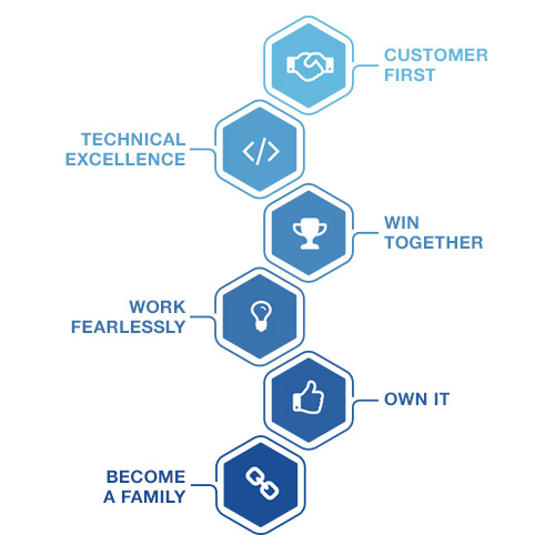 Core Values Infographic